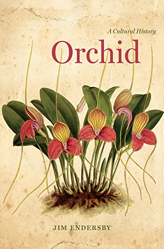 Orchid: A Cultural History by Jim Endersby