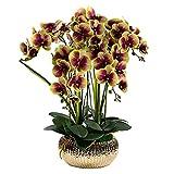 5 Cabezas De Orquídeas De Imitación De Seda Phalaenopsis Arreglo Floral Flores De Orquídeas Artificiales con Jarrón Ceramis, Decoración De Centro De Mesa De Comedor De Fiesta De Boda (Color: Morado)