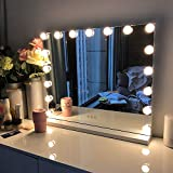 FENCHILIN Large Vanity Mirror with Lights, Hollywood Lighted Makeup Mirror with 14 Dimmable LED...