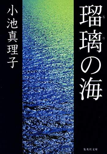瑠璃の海 (集英社文庫)の詳細を見る