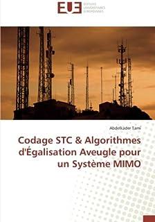 Codage STC & Algorithmes d'Égalisation Aveugle pour un Système MIMO
