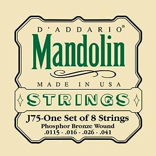 ronnie mccoury mandolin strings