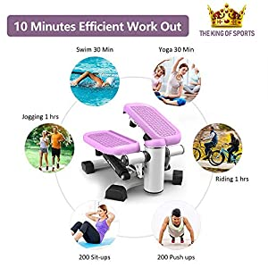 leikefitness Premium Portable Climber Stair Stepper & Waist Fitness Twister Step Machine with LCD Monitor ST6600-1(Pink)