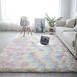 Pauwer Luxus Samt Shag Area Teppich Seidig Glatte Pelz Teppiche rutschfeste Moderne Plüsch Kinderzimmer Teppiche für Kinder Baby Home Decor Schlafzimmer Boden Teppich Teppich (Multi, 80 x 160 cm)