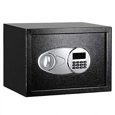 AmazonBasics Steel Security Safe Lock Box with Digital Lockpad