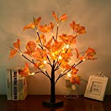 LED Baum Licht, WZOED 50cm 24 LEDs Lichterbaum Batteriebetriebenes Schreibtisch Ahornblatt (Herbst)...