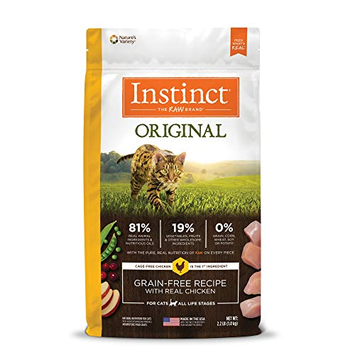 Best Food for Maine Coon Cats 2