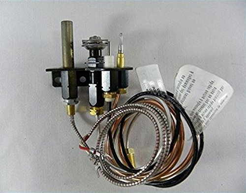 Napoleon Propane Gas Pilot Assembly for Direct Vent Fireplaces WS-100-39