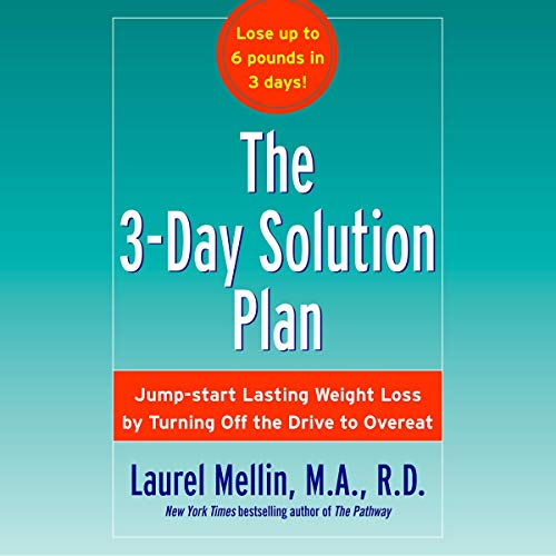 The 3-Day Solution Plan Titelbild