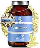 QIDOSHA® Quercetin Kapseln hochdosiert, 120 Stk im Glas (kein Plastik), 510mg Quercetin pro Kapsel, Extrakt aus Japanischen Schnurbaumblüten, vegan, laborgeprüft