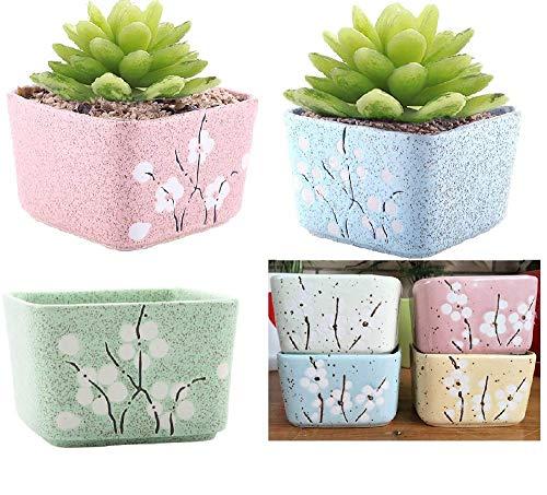 DHRH Macetas Interior, colección macetas Plantas suculentas cerámica