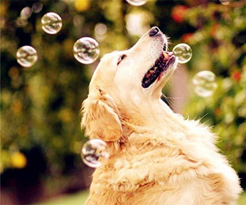 N/X Diamond schilderij DIY hond spelen met bubbels huisdecoratie volledige diamant ronde diamant 30x40cm