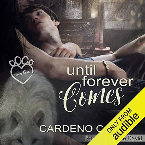 Couverture de Until Forever Comes