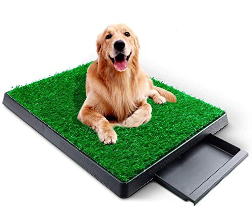 Hundetoilette Hundeklo Trainingsunterlage mit Kunstrasen, Welpentoilette Töpfchenauflage Haustier Klo Töpfchen WC Trainingpads für Welpen Kleine Mittelgroß/ältere Hunde