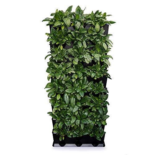 Minigarden Vertical Kitchen Garden per 24 Piante, Kit di irrigazione a Goccia Incluso, Posizionato sul Pavimento o Fissato al Muro, Sistema di Drenaggio Innovativo, Lungo Ciclo di Vita (Nero)