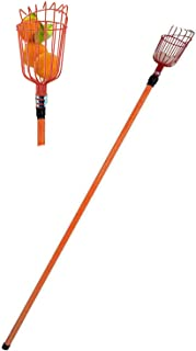Professional Metal Fruit Picker with Long Telescoping 8ft Pole & Fruit Catcher - Reach Fruit up to 15ft without a ladder