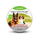 Best Flea Collar For Dogs - SOBAKEN Flea and Tick Prevention for Dogs, Natural Review