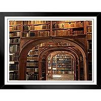 ぶら下げ絵画 - 性格ポスター - アンティーク図書館テーマ - サイズ:39x31cm(額縁を送る)