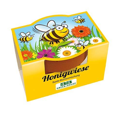 10er Bienen Minipflanzset Honigwiese mit Samen für bunte Bienen Blumen
