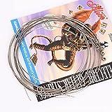 Fansjoy Set di Corde per Chitarra Elettrica, Scalatura Super Leggera, 09-42