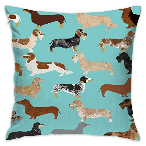 Mabell Beautifully Decorated Home Dachshunds Long Haired Smooth Doxie Wire Haired Dachshunds Cute Dogs Throw Pillow Case 18X18 Inches