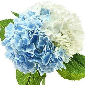 FiveSeasonStuff Real Touch Silk Hydrangea Flowers, 2 Large Long Stem Artificial Flowers for Floral Arrangements (Mixed Summer White & Heavenly Blue)