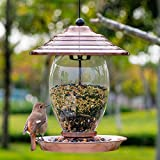 Birdream Wild Bird Feeder Outdoor Hanging Bird Feeders for Outside Metal Glass 3lb Seed Capacity Decoration with Roof for Yard Garden