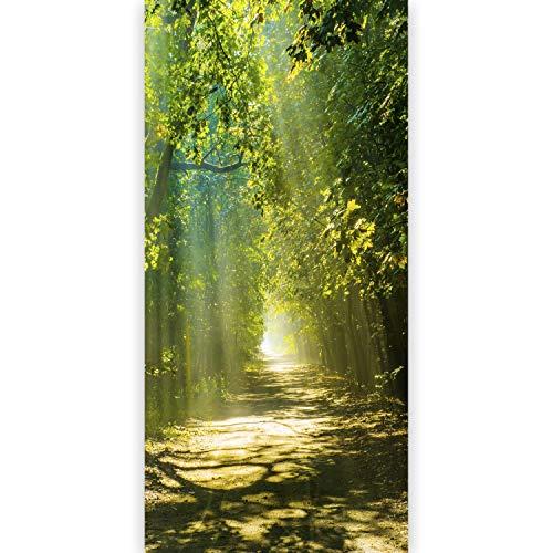 murando - Türtapete selbstklebend 80x210 cm Vliesleinwand Fototapete Tapete Türpanel Türposter Türaufkleber Türsticker Tür Dekoration Foto Bild Design Bäume Weg Natur grün c-B-0196-a-d
