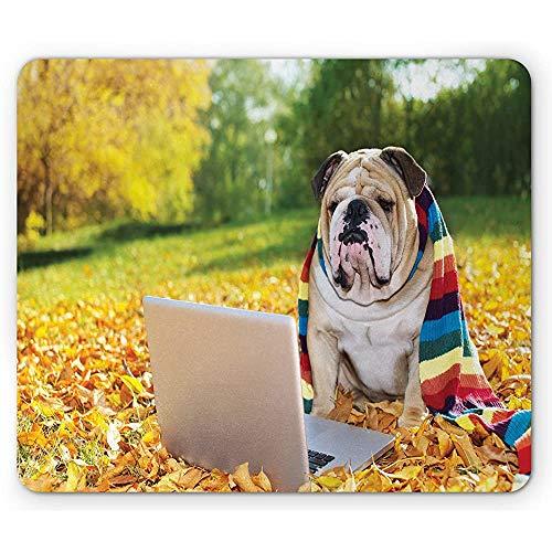 Engels Bulldog muismat, hond in het park met een laptop Rainbow gekleurde sjaal grappige fotografie, muismat