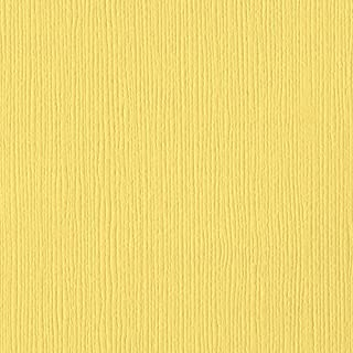 Bazzill African Daisy 12x12 Textured Cardstock | 80 lb Rich Floral Yellow Scrapbook Paper | Premium Card Making and Paper Crafting Supplies | 25 Sheets per Pack