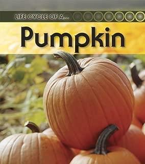 Best pumpkin second life Reviews
