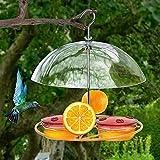 Bebliss Clear Suspension de la Peur des Oiseaux d'oiseau Maningbird Manming avec Un Couvercle...
