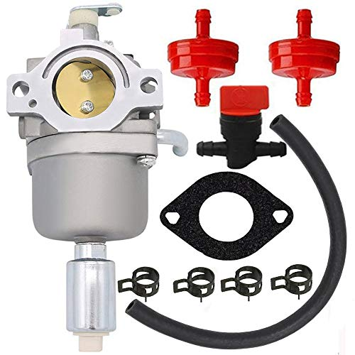 HOOAI Carburetor for Briggs & Stratton 591731 796109 594593 590400 796078 4u8-31H777-594593 Carburetor