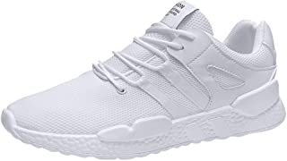 Lailailaily Men's Summer Sports and Leisure Mesh Wild Trend White Sneakers Shoes