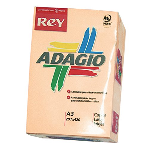 Papyrus Adagio kopieer-/printerpapier 500 vellen papier kleur voor laserprinter/inkjetprinter/kopieerapparaat 80 g formaat A3 Zalmkleurig