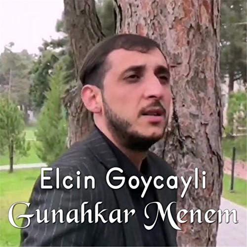 Elcin Goycayli