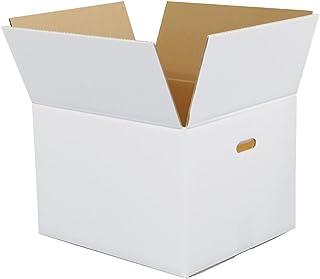 ボックスバンク ダンボール(段ボール箱)100サイズ 白(取っ手穴付)10枚セット 文書保存・引越し FW06-0010-b