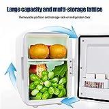 Gxing Mini refrigerador de 4 l, refrigerador de maquillaje de doble uso, alta eficiencia para coche, compacto, portátil y silencioso mini nevera
