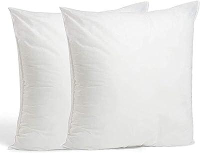 Ewolee Lot de 2 coussins en coton PP hypoallergénique - Forme carrée - Lavable - 45,7 x 45,7 cm