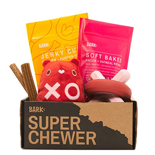 Super Chewer by BarkBox Monthly Subscription Box | Dog Box Care Package for Aggressive Chewers | Durable Dog Toys | Small Dog (0-20lb)