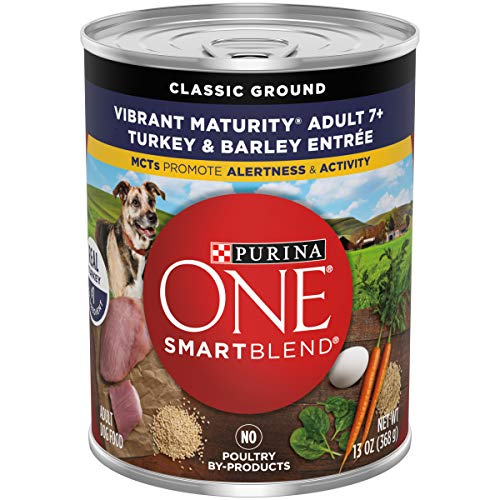 soft dry dog food for older dogs