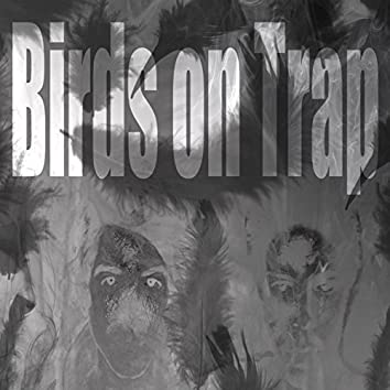 Birds on Trap
