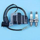 Módulo de bobina de encendido 6H Kit de bujía compatible con Honda GX35 UMK435 CQ35 Motor Motor Cortasetos Desbrozadora 30500-Z0Z-013 CMR6H