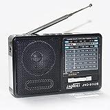 Radio con batería Recargable, Bluetooth, FM/Am / SW1-5, con Linterna, Cable USB Carga Incluido. (Radio)