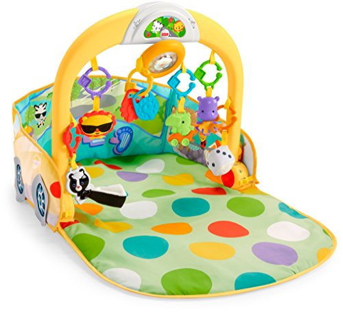 Fisher Price Infant DFP07