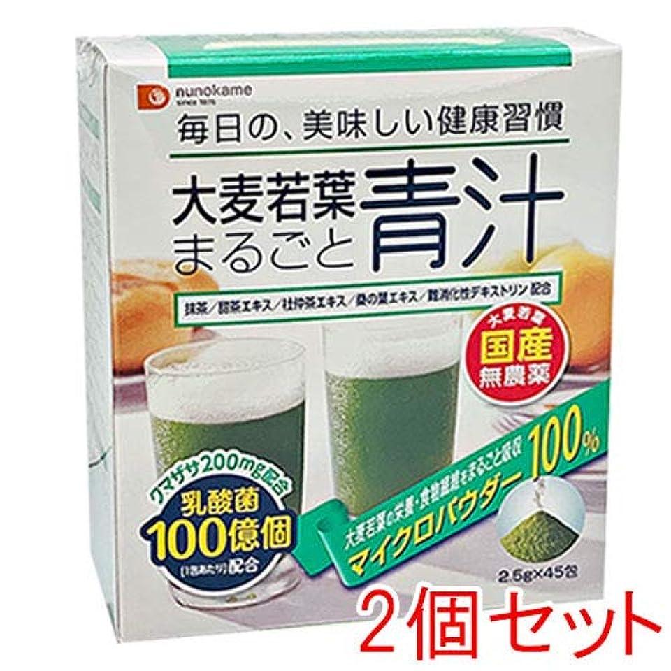 フィドル他の日それら大麦若葉まるごと青汁【2個セット】 2.5g×45包×2