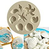 CALIDAKA Seashell Sea Shell Fondant Mold, Round Silicone Baking Mould Candy Chocolate Cake,Make Your Own Homemade Bar Soap DIY Soap Mold Jelly Ice Cake Chocolate Moulds(7 cm)