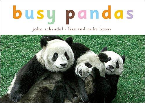 Busy Pandas (A Busy Book)