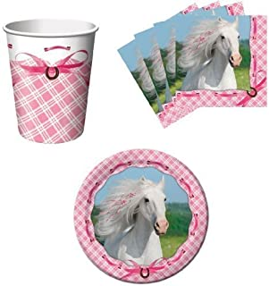 Paper Art Heart My Horse Pink Birthday Party Supplies Set Plates Napkins Cups Kit for 16