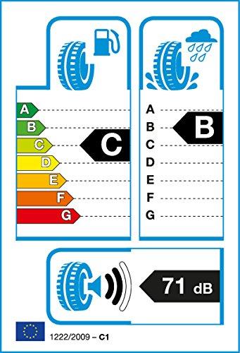 Duraturn Mozzo S+  - 205/60R15 91V - Sommerreifen